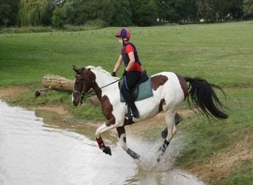 Hill Top Equestrian in Salisbury
